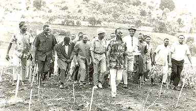Mwalimu's past-time activity: inspecting a rural farm